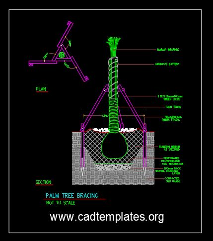 Palm Tree Bracing Details CAD Template DWG