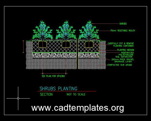 Shrubs Planting Details CAD Template DWG