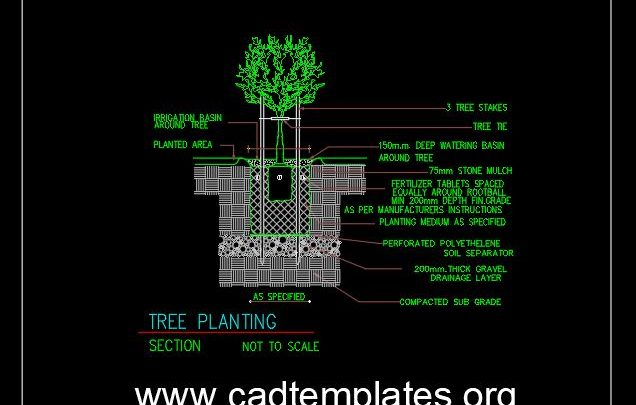 Tree Planting Details CAD Template DWG